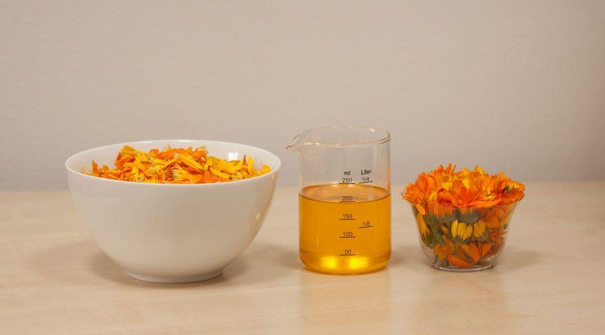 El aceite de caléndula – Un poco de historia y por qué lo utilizamos en nuestros productos
